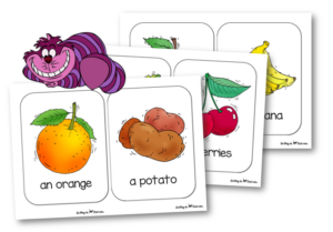 Cat and mouse food flashcards
