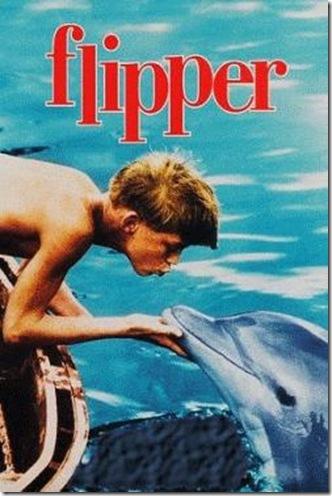 film-flipper-le-dauphin