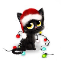 avatar-chat-noir-noel