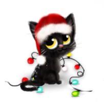 avatar-chat-noir-noel